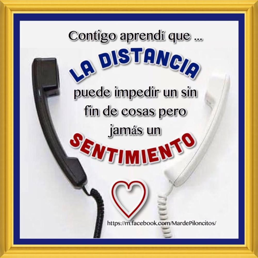 amor_031