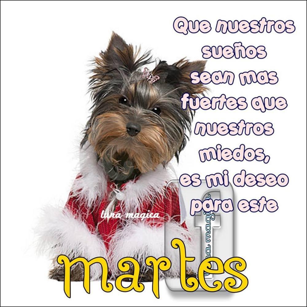martes_020
