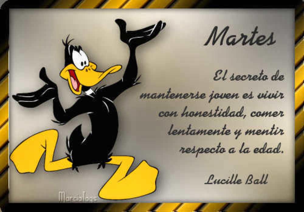 martes_054