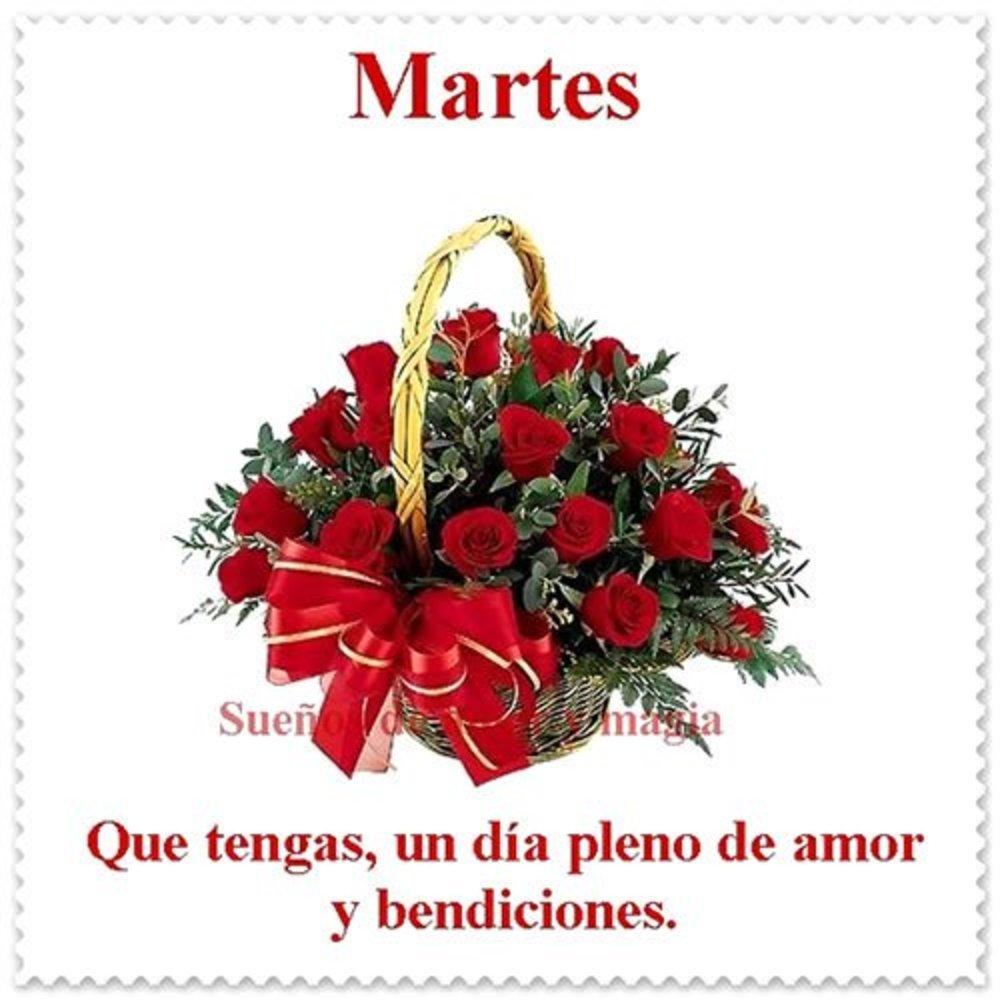 martes_102