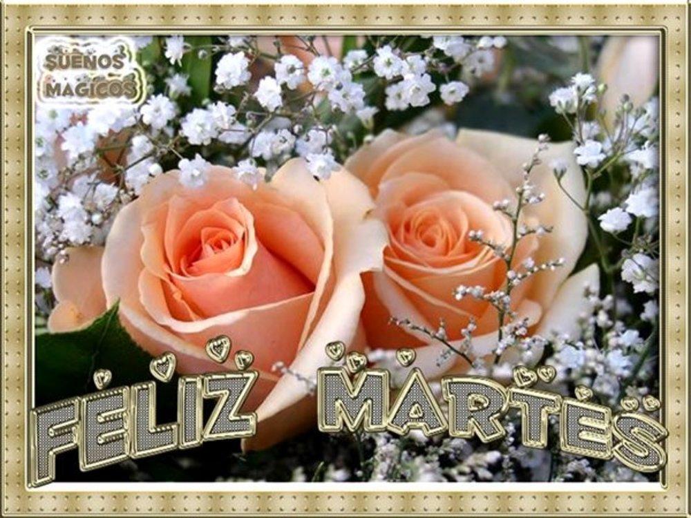 martes_126