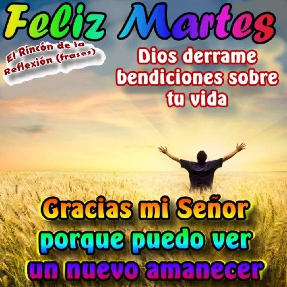 martes_183