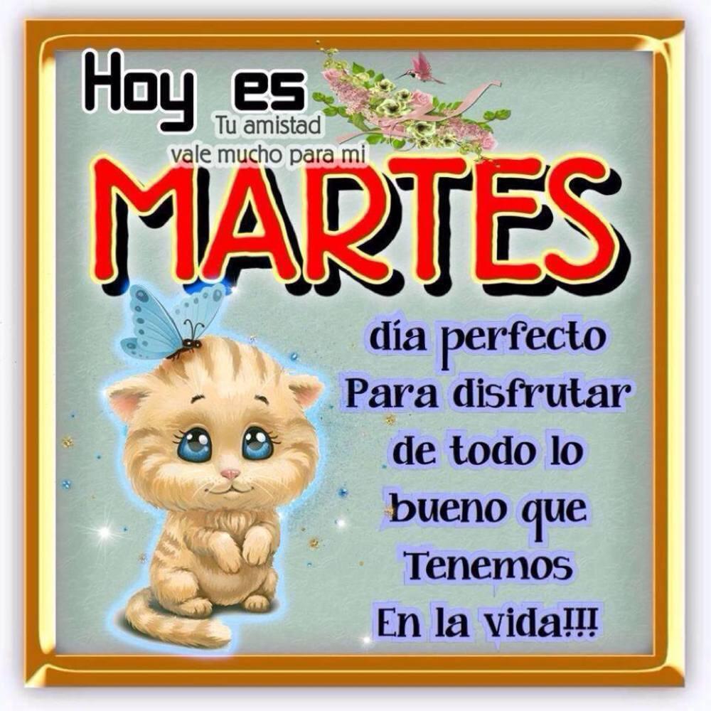 martes_209