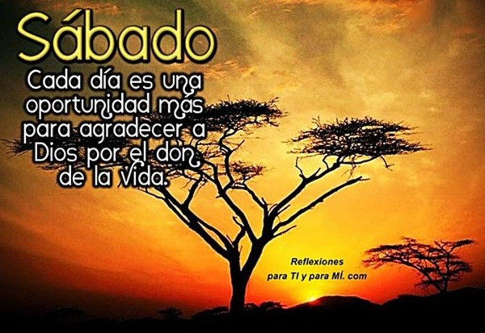 sabado_088