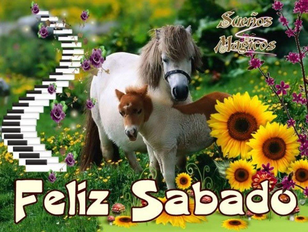 sabado_096