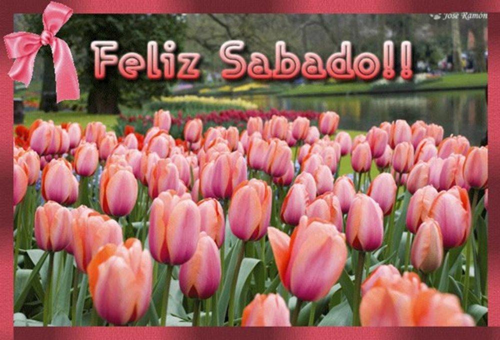 sabado_103