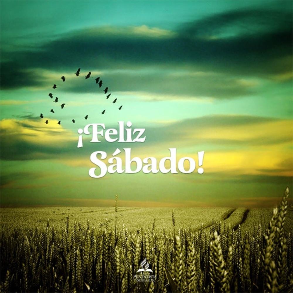 sabado_146
