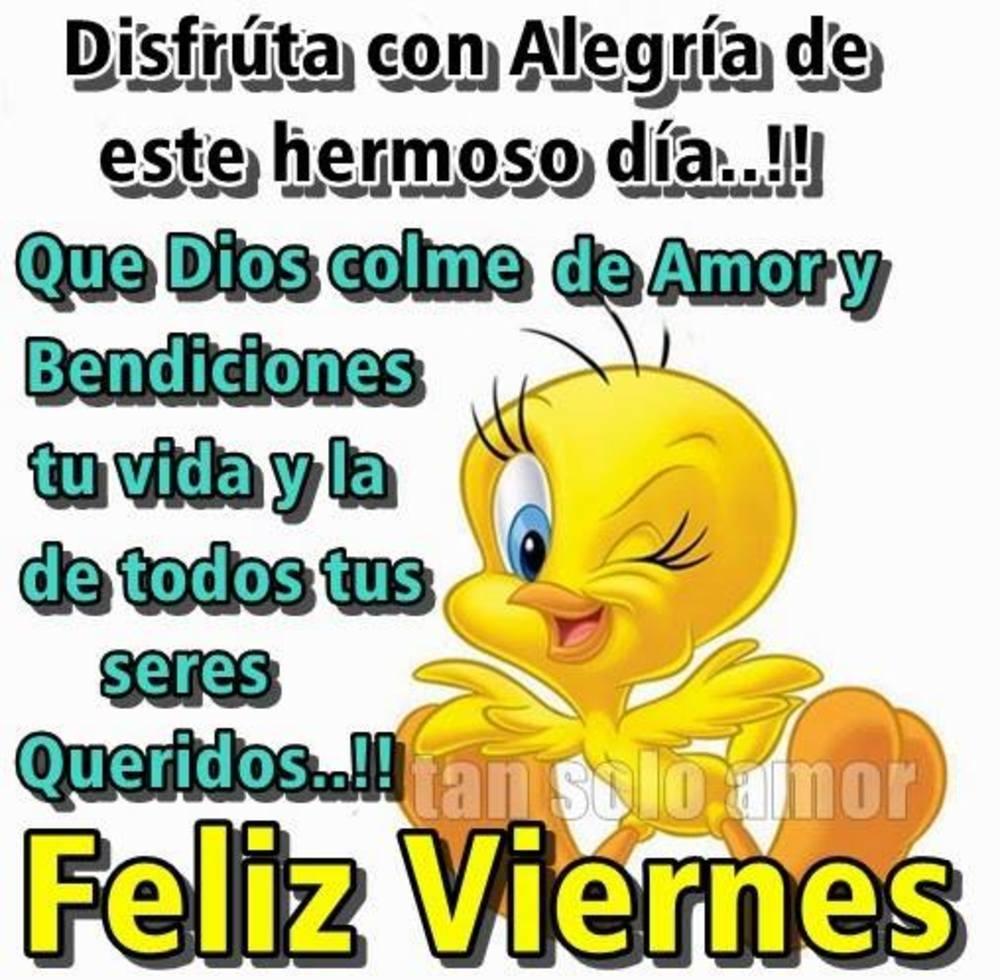 viernes_036