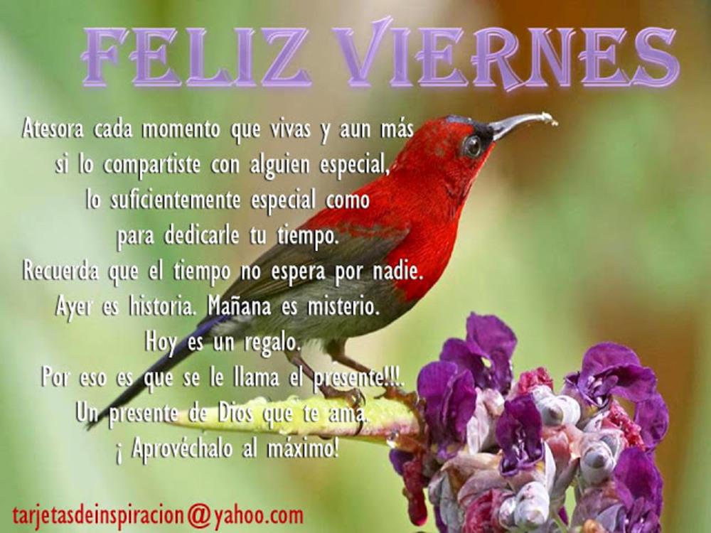 viernes_059