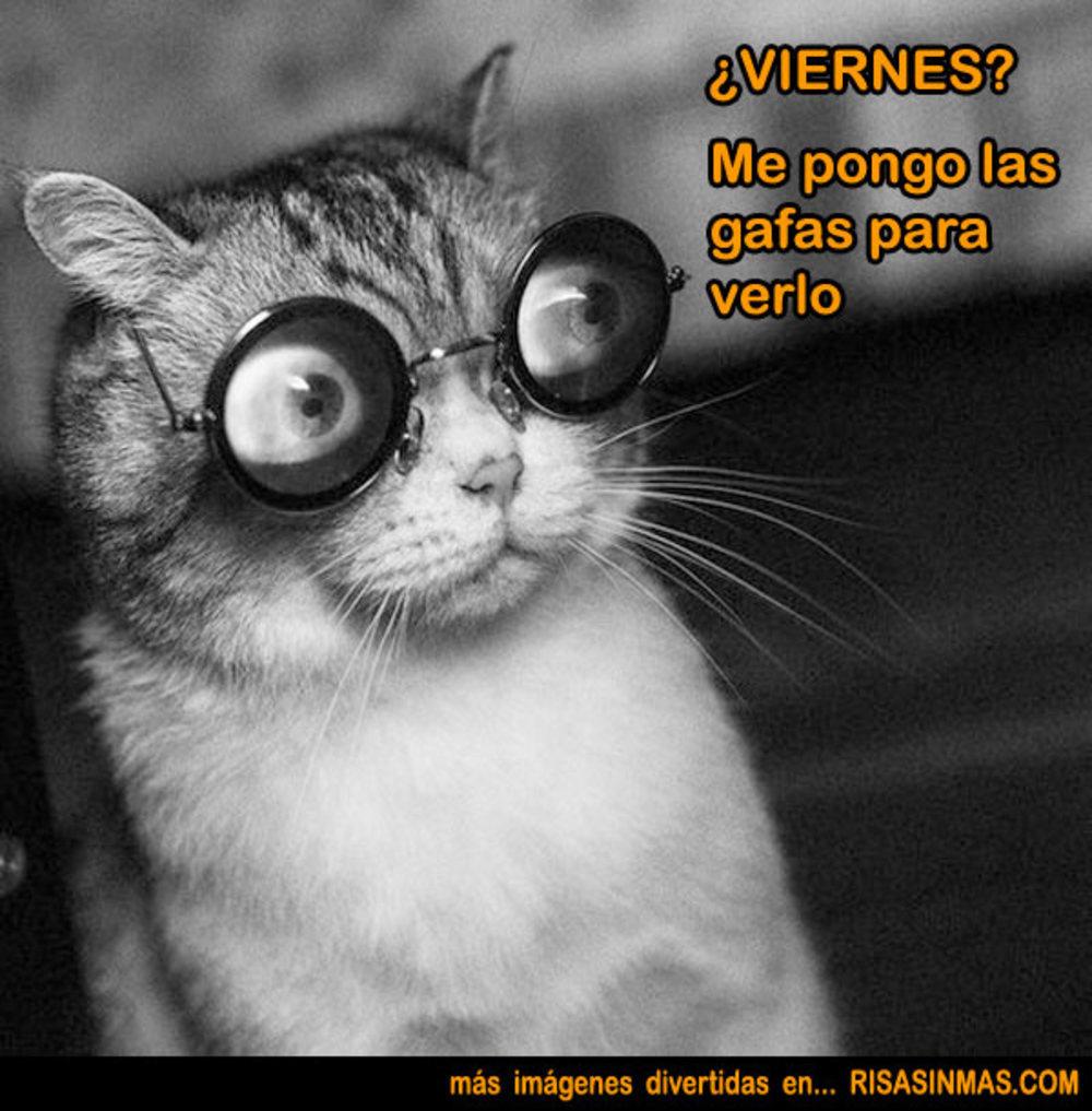 viernes_084