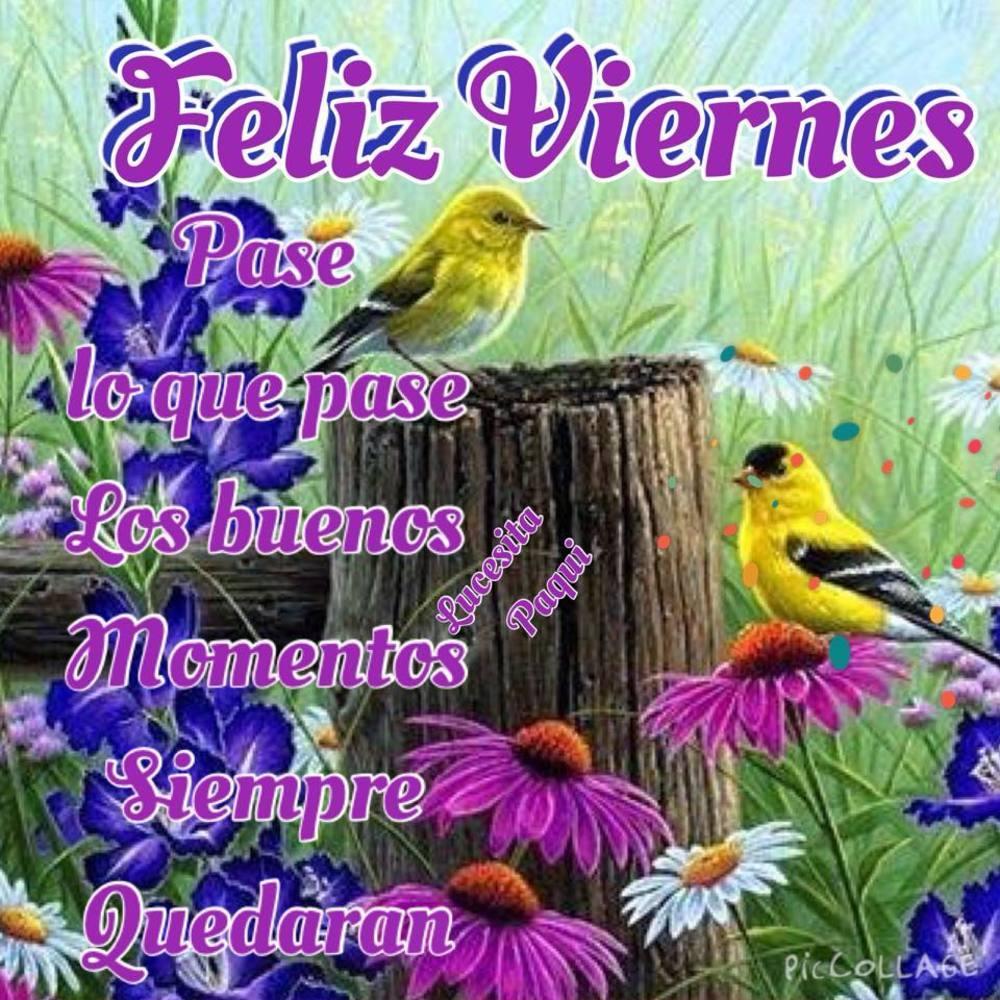 viernes_154