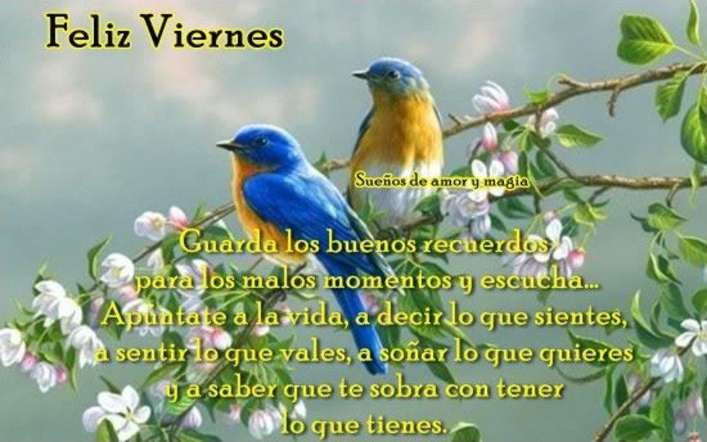 viernes_203