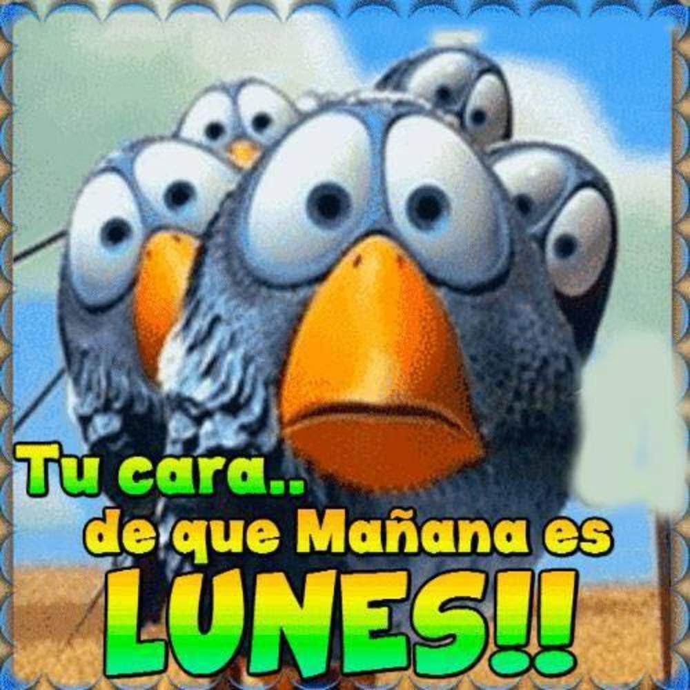 manana-es-lunes_004