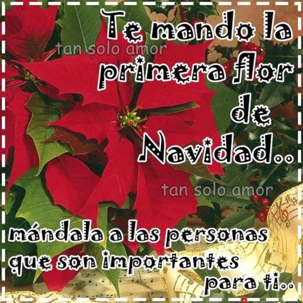 navidad_006