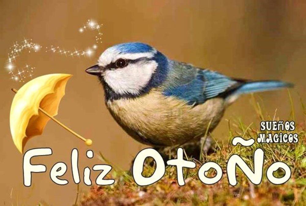 otono_002